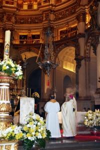 D. Javier Domingo Resurrección