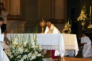D. Javier altar Catedral_portada