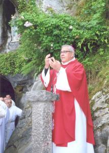Mons. Martínez, durante la Eucaristía celebrada en la gruta de la Virgen de Lourdes.